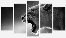 BLACK AND WHITE LION ANIMAL WILD 5 SPLIT PANEL WALL ART CANVAS PICTURE PRINT