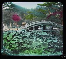 GLASS MAGIC LANTERN SLIDE LOTUS POND KAMAKUSA TOKYO C1910 JAPANESE JAPAN