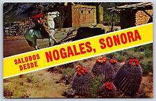 Saludos Desde Heroica Nogales, Sonora, Mexico Chrome Postcard Unused