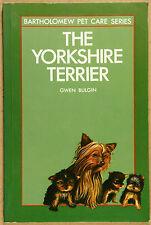 The Yorkshire Terrier Gwen Bulgin G Qld Qikpost