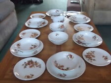 MYOTT AMBLESIDE DINNER SERVICE FOR SIX