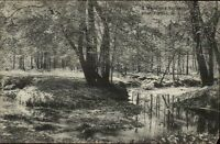 Verona NJ Woodland Scene c1910 Postcard
