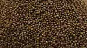 LOOSE CATFISH PELLET 2mm Premium Tropical Fish Food - Cory Pleco Bottom feeders