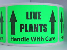 LIVE PLANTS HANDLE WITH CARE 2x3 Sticker Label fluor. green bkgd, 50 labels