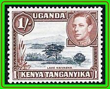 KENYA KUT 1938 KGVI  LAKE SC#80 MNH CV$30.00
