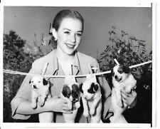 "Piper Laurie with Papillon dogs puppies publicity photo 1952 9""x7"" press snipe"