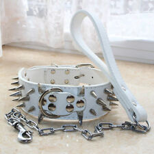 White Leather Large Breed Spiked Studded Dog Collar+Chain Leash SET PitBull S-XL