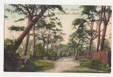 Fir Avenue Hampstead Heath London Vintage Postcard 307a