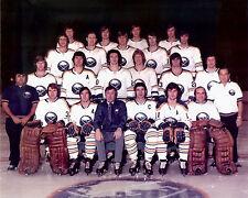 Buffalo Sabres 1973-74 - 8x10 Color Team Photo