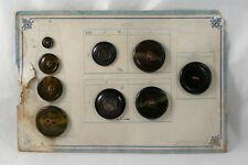 Présentoir 9 bouton ancien XIX bakélite nacre antique button 4 tailles mercerie