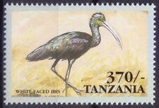 White-faced Ibis, Water Birds, Tanzania 1999 MNH - E18