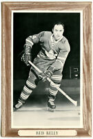 1964-67 Beehive Group III Red Kelly Photo Card Toronto Maple Leafs Clean Back