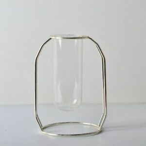 Glass Vase Iron Hydroponic Plant Flower Tabletop Office Home Decoration Modern