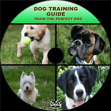 DOG TRAINING DVD LESSONS SIMPLE STEP BY STEP VIDEO GUIDE FROM PUP TO ADULT NEW