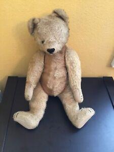 """Vintage STEIFF Teddy Bear 21 1/2"""" Rare!"""
