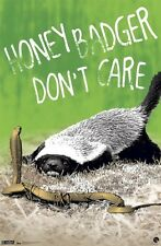 ANIMAL POSTER ~ HONEY BADGER DON'T CARE 22x34 FREE FAST SHIPPING Ratel Randall