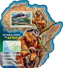 Sierra Leone 2016 MNH Western Area Peninsula National Park 1v S/S Birds Stamps