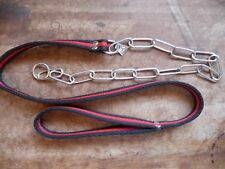 Slip dog lead and choke chain combination