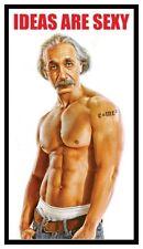 Fridge Magnet: IDEAS ARE SEXY (Funny Albert Einstein)
