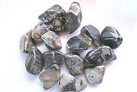 *ONE* Silverleaf Jasper XL 45-55mm Tumbled Stone Healing Crystal Shamans Magic