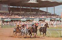 CANANDAIGUA NEW YORK~FINGER LAKES RACETRACK~HORSE RACING POSTCARD