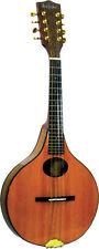 Instrumentos de cuerda, tradicionales y del mundo Ashbury