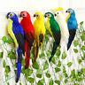25/35CM PARROT ANIMAL BIRD LAWN FIGURINE ORNAMENT YARD GARDEN DECOR FUNNY