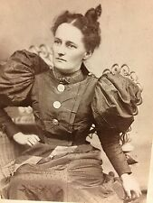 Albumen Photograph~Victorian Beauty In Dress With Big Puffy Sleeves~Reading PA