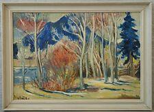 Unbek. Expressionist » Waldlandschaft « sig. Villy B ...?