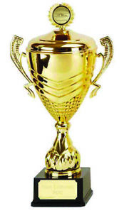 """Link Prestige Gold Netball Cup Presentation Trophy  15"""" ,Free p&p & Engraving"""