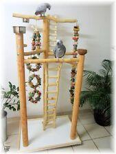 FREISITZ  DELUXE ROTBUCHENHOLZ, Papageienspielzeug, mit Leiter zum Boden, 165 cm