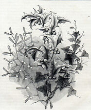 IVY, HOLLY AND MISTLETOE 1871 Winter Solstice Festival VICTORIAN ENGRAVING