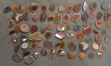 80 Piece Cut & Polished Agua Nuevas Agate Nodules Great for Jewelry or Display
