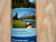 Poster géant XXL décoration mural papier peint stickers forêt nature 368x254cm