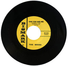 "BRIKS  ""CAN YOU SEE ME""   60's GARAGE / PUNK   LISTEN!"