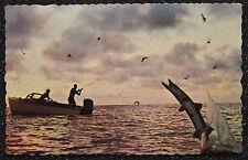 Postcard ~ Tropical Fishing ~ Landing a Barracuda