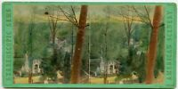 Hand painted Greenwood Cemetery Brooklyn N.Y Vintage Stereoview Photo by Anthony