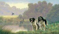 Nigel Hemming WATER SPORTS Springer Spaniels, Art Canine Ltd Edition  #1