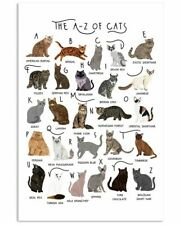 The A To Z Of Cats Bengal American Bobtail Devon Rex Exotic Shorthair Poster