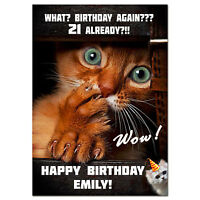 g015; Large personalised BIRTHDAY CARD with your text; Funny cat age joke cheeky