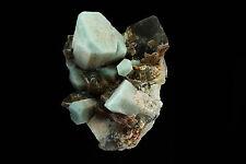 Quartz var. Smoky w/ Amazonite Specimen Rock area, El Paso Co., Colorado 703050