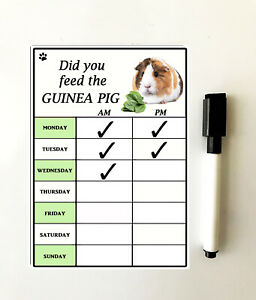 Guinea Pig Lovers - 'Did You feed the Guinea Pig?' - Feeding Chart & Marker Pen