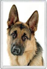 ALSATIAN - JUMBO FRIDGE MAGNET  DOG DOGS PUP PUPS PUPPIES CANINE GERMAN SHEPHERD