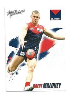 2010 Prestige (103) Brent MOLONEY Melbourne