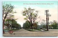 Albany New York NY The Point Madison Ave Western Ave Street View Postcard A57