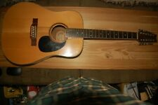 Washburn 12 String Acoustic. D-10-12. Good used condition!