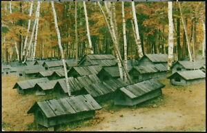 CHICAUGON LAKE MI Ojibwe Indian Burial Grounds Cemetery Vtg Iron River Postcard