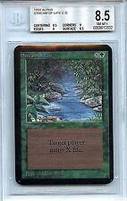 MTG Alpha Stream of Life BGS 8.5 NM-MT+ card 1993 Magic the Gathering WOTC 2832