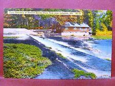 Postcard MO Lebanon Trout Hatchery at Bennett Spring State Park