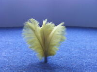 50pcs New Real,natural 10-12 inch Ostrich Feathers gold decorations